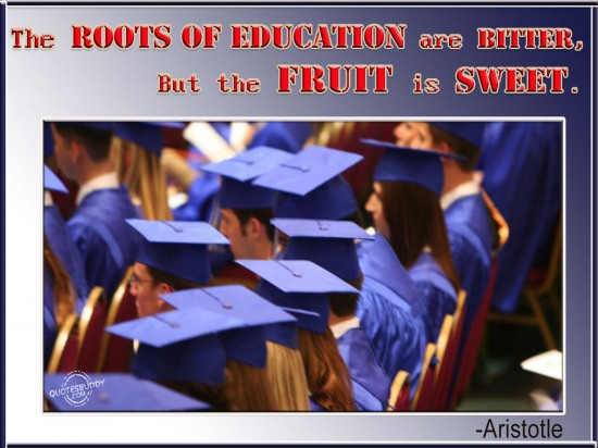 The Roots of Education are bitter but the fruit is sweet ~ Education Quote