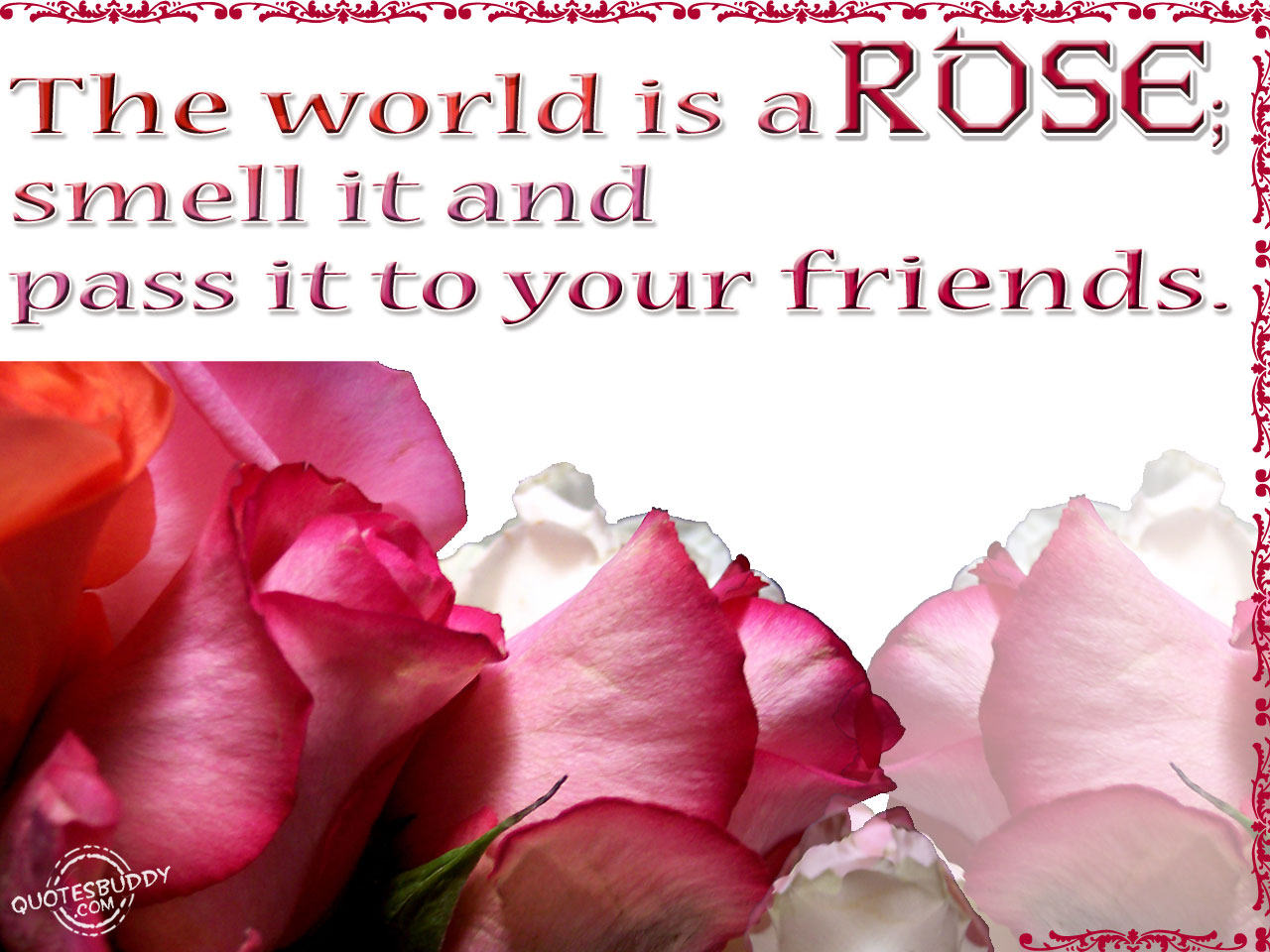 The World is a Rose,smell it and pass it to your friends ~ Flower Quote