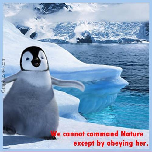 We cannot command Nature except by obeying her ~ Environment Quote