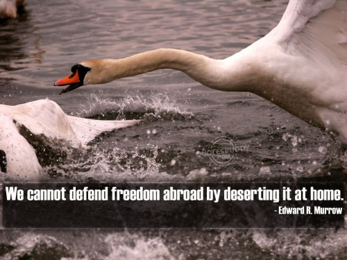 We cannot defend freedom abroad by deserting it at home ~ Freedom Quote