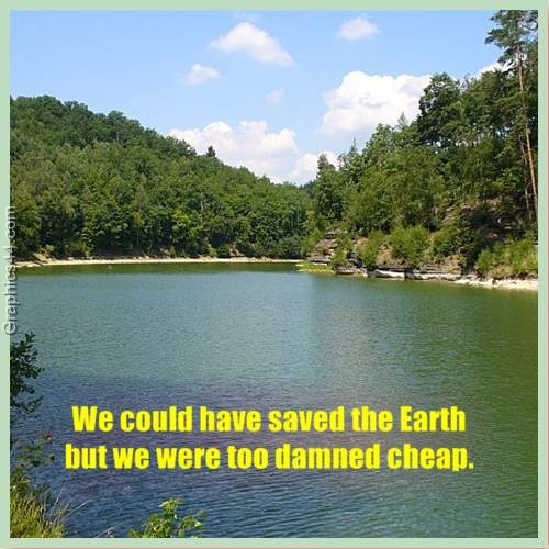 We could have saved the Earth but we were too damned cheap ~ Environment Quote