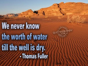 We Never Know the worth of water till the well is dry ~ Environment Quote