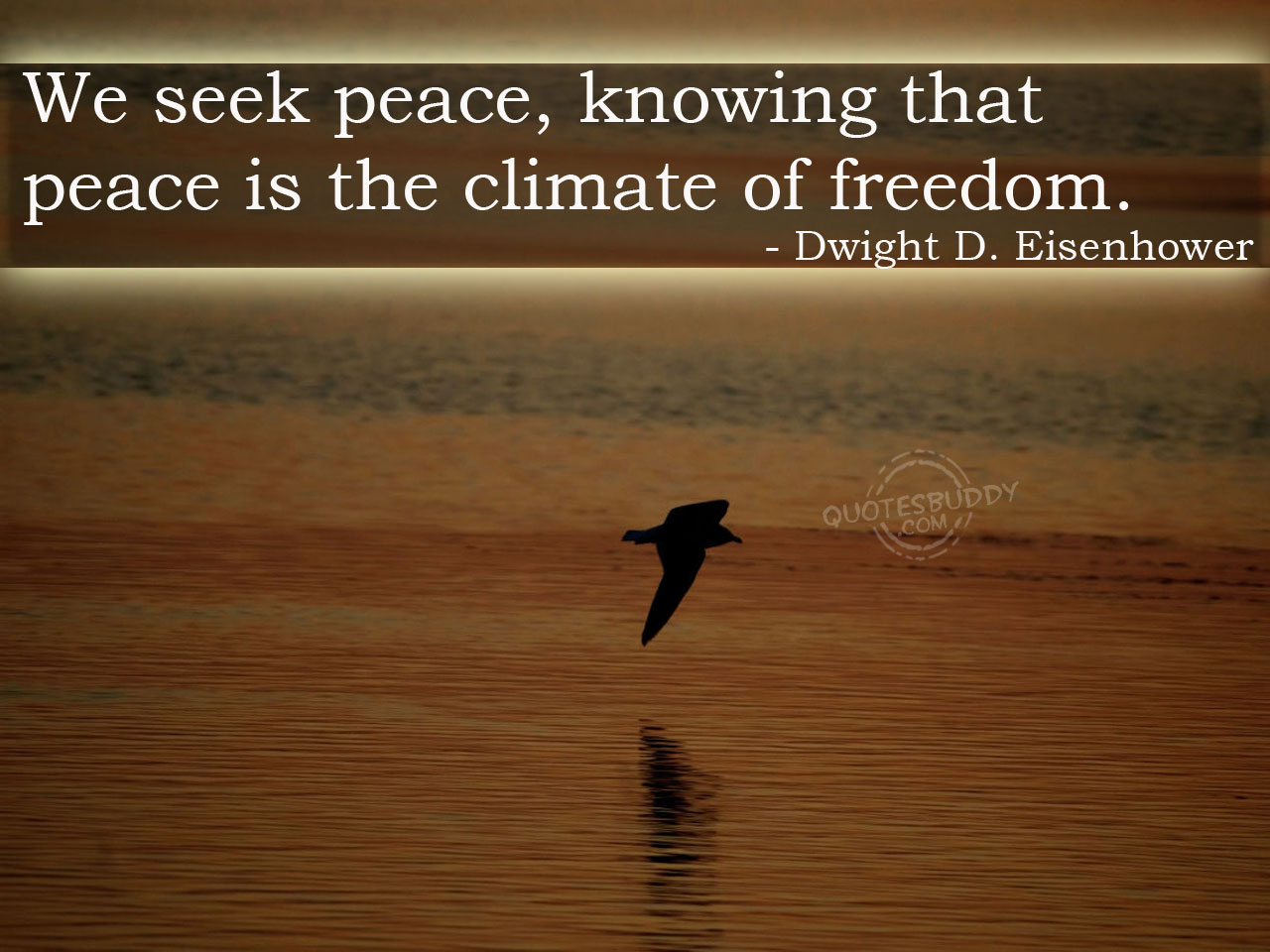 We Seek Peace,Knowing that Peace Is the Climate of Freedom ~ Freedom Quote