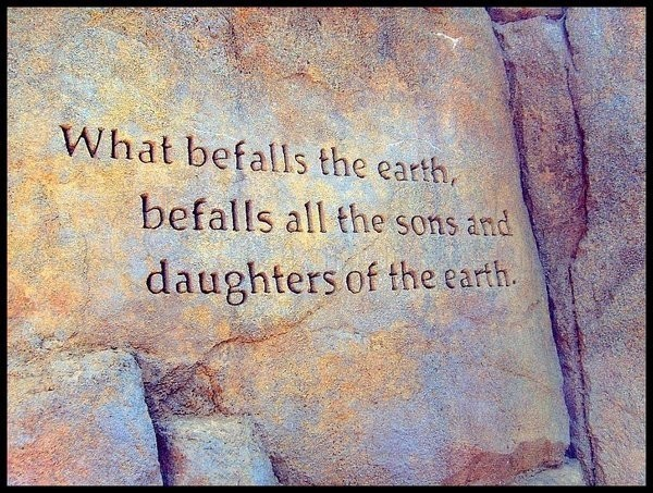 What Befalls the Earth ~ Earth Quote
