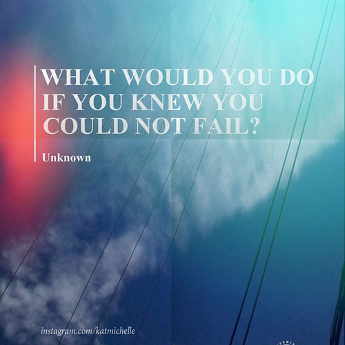 What Would You Do If You Knew You Could Not Fail ~ Failure Quote