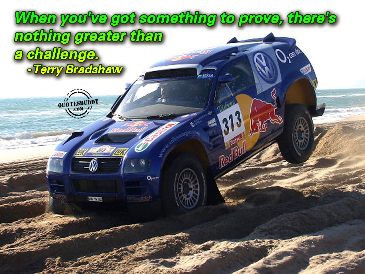 When You've got something to prove,there's nothing greater than a challenge ~ Challenge Quote