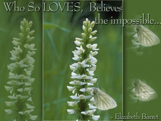 Who so Loves, believes the impossible ~ Faith Quote