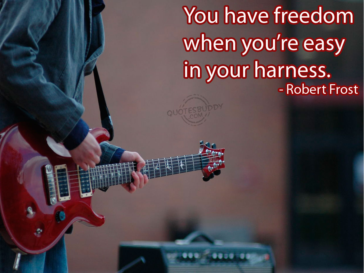 You have Freedom When You're Easy In Your Harness ~ Freedom Quote