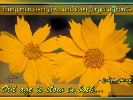 Young men soon give, and soon forget affronts, old age is slow in both