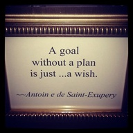 A Gaol Without a Plan Is Just a Wish ~ Goal Quote