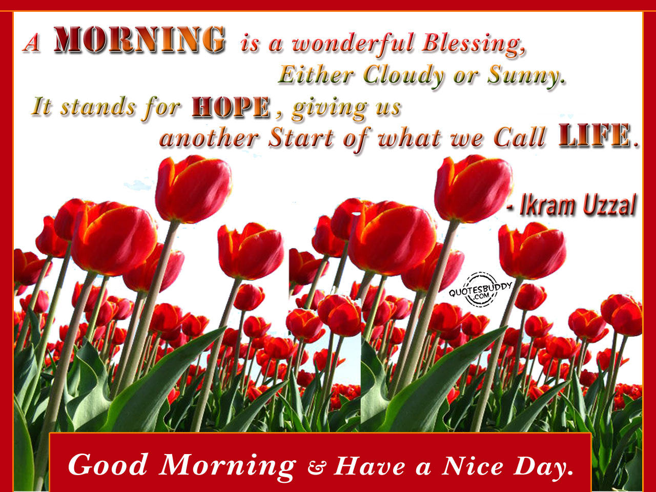 A Morning Is a Wonderful Blessing ~ Good Day Quote
