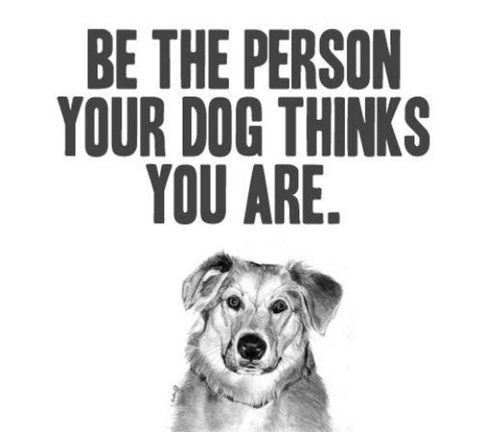 Inspirational Pet Quotes: Be The Person Your Dog Thinks You Are