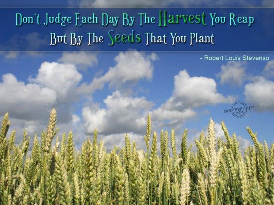 Don't Judge Each Day By The Harvest You Real But By The Seeds That Impressive Planting Seeds Inspirational Quotes