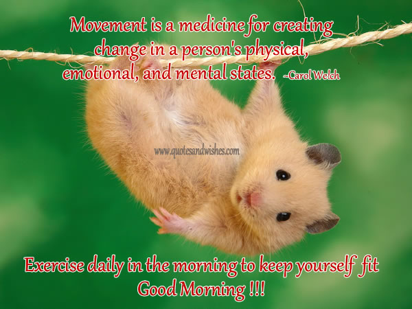 Exercise Daily In the Morning to Keep Yourself Fit ~ Good Morning