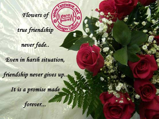 Friendship Quotes Like Flowers Bonds Of Success