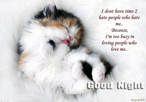 I Don't Have Time to Hate People Who Hate Me,Because I'm too Busy In Loving People Who Love Me ~ Good Night Quote