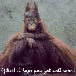 I Hope You Will Get Well Soon! ~ Get Well Soon Quote