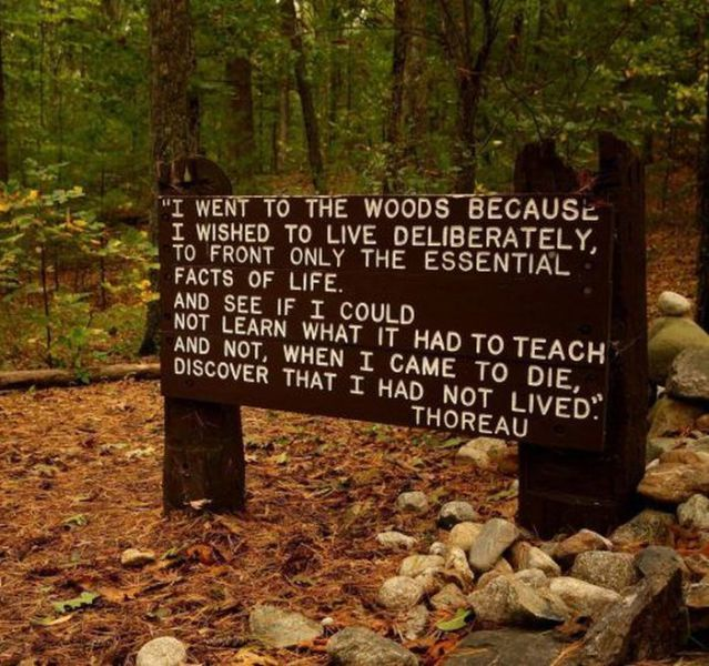 I Went To The Woods Because I Wished To Live Deliberately ...