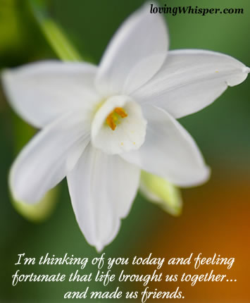 I'm thinking of you today and feeling fortunate that life ...