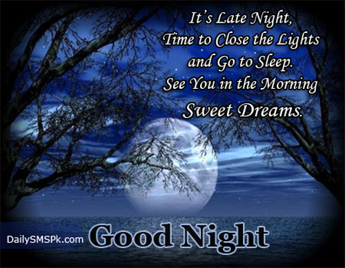 ... the Lights and Go to Sleep See You In the Morning ~ Good Night Quote