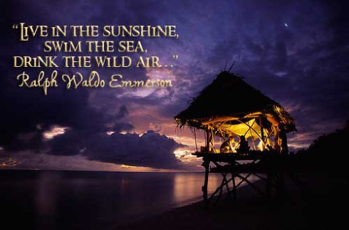"""Live In The Sunshine,Swim The Sea,Drink The Wild Wild Air"" ~ Good Night Quote"