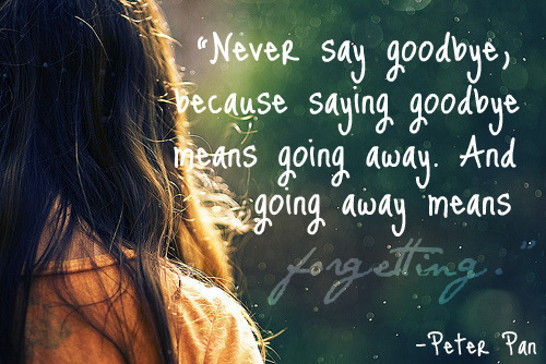 """""""Never Say Goodbye,because Saying Goodbye Means Going Away"""