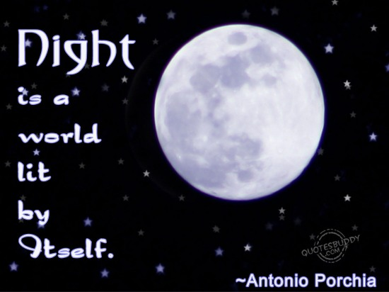 Night is a world lit by Itself ~ Good Night Quote