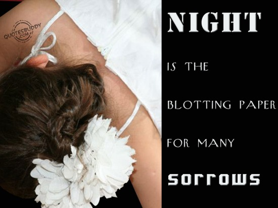 Night is the blotting paper for many Sorrows ~ Good Night Quote