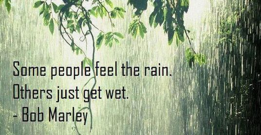 Some People Feel the Rain,Others Just Get Wet ~ Funny Quote