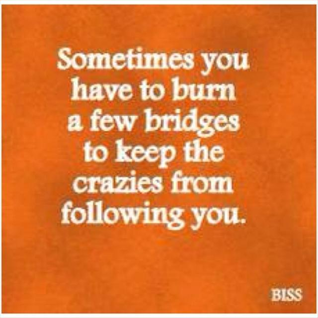 Sometimes You Have to Burn a Few Bridges to Keep the Crazies from Following You ~ Funny Quote
