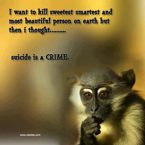 Suicide Is A Crime Funny Quote Quotespictures Com