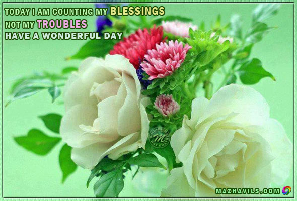 Today I Am Counting My Blessings Not My Troubles,Have A Wonderful Day ~ Good Day Quote