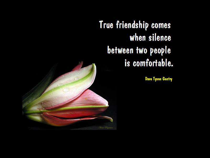 True Friendship Comes When Silence Between Two People Is
