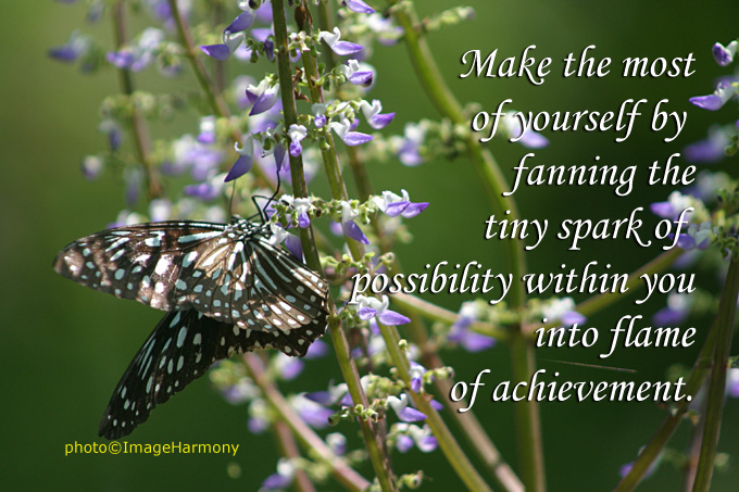 Try to make yourself fanning the tiny spark of Possibility of achievement ~ Inspirational Quote