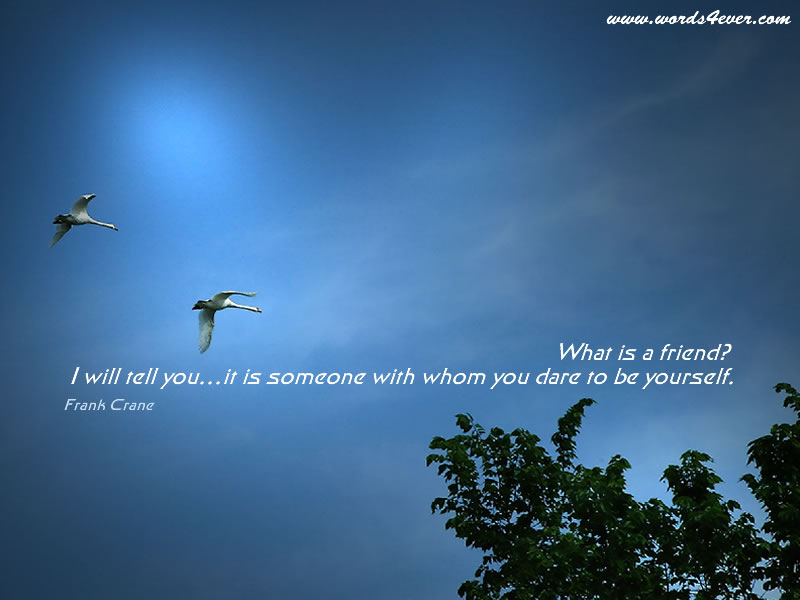 What Is a Friend! I Will Tell You..It Is Someone With Whom You dare to be Yourself ~ Good Day Quote