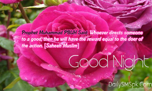 Whoever Directs Someone to a good than,he will have the reward equal to the Doer of the Action ~ Good Night Quote