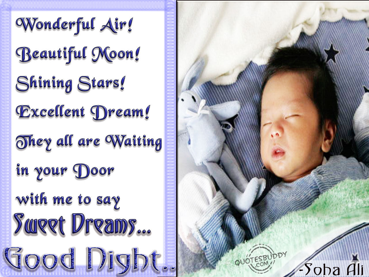 Wonderful Air! Beautiful Moon! Shining Stars! Excellent Dream! They All are Waiting In Your Door with me to Say Sweet Dreams ~ Good Night Quote