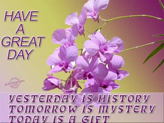 Yesterday is history, Tomorrow is mystery, Today is gift ~ Good Day Quote