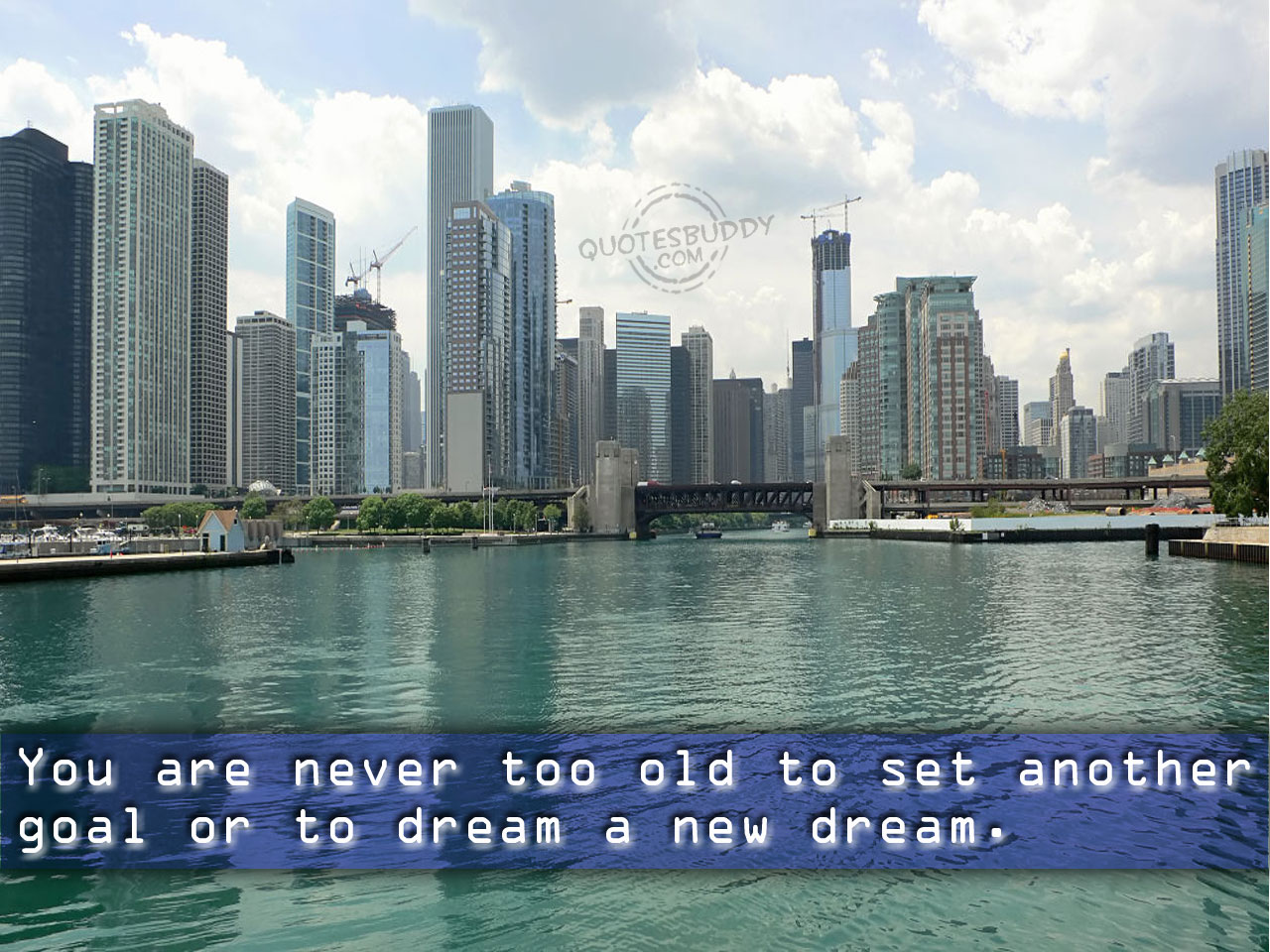 You Are Never Too Old to Set Another Goal or to Dream a New Dream ~ Goal Quote