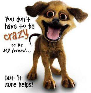 You Don T Have To Be Crazy To Be My Friend Friendship Quote