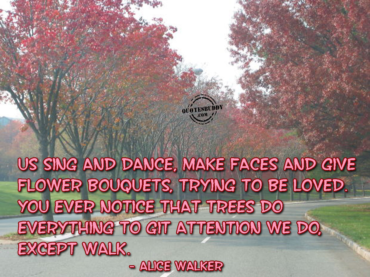 You Ever Notice That Trees Do Everything To Get Attention We Do Accept Walk ~ Good Day Quote