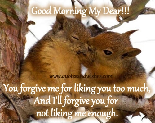 You Forgive Me for Liking You Too Much,and I'll Forgive You for Not Liking Me  Enough ~ Good Morning Quote