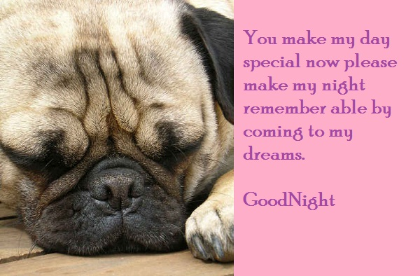 You Make My Day Special Now Please make My Night Remember able by Coming to My Dreams ~ Good Night Quote