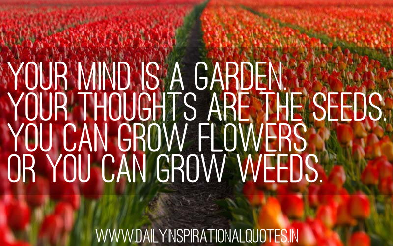 Your Mind Is A Garden Your Thoughts Are The Seeds.You Can Grow Flowers Or You Can Grow Weeds ~ Inspirational Quote