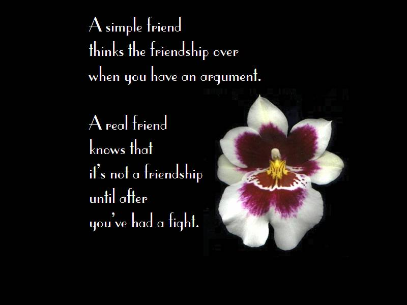You've had a Fight ~ Friendship Quote