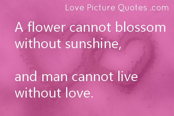 A Flower Cannot Blossom Without Sunshine, And Man Cannot Live Without Love ~ Love Quote