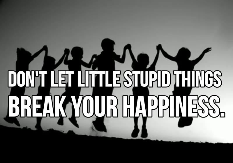 Quotes About Saying Stupid Things: Don't Let Little Stupid Things Break Your Happiness