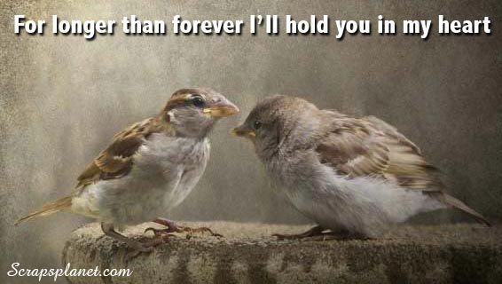 For Longer Than Forever I'll Hold You In My Heart ~ Love Quote
