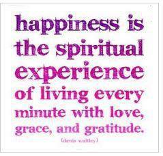 happiness-is-the-spiritual-experience-of-living-every-minute-with-love-grace-and-gratitude-love-quote.jpg