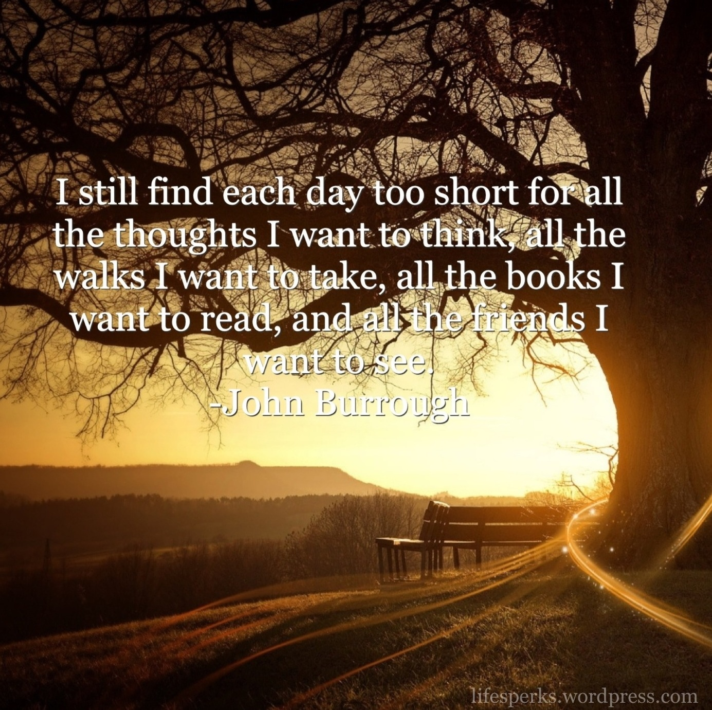 i still find each day too short for all the thought i want